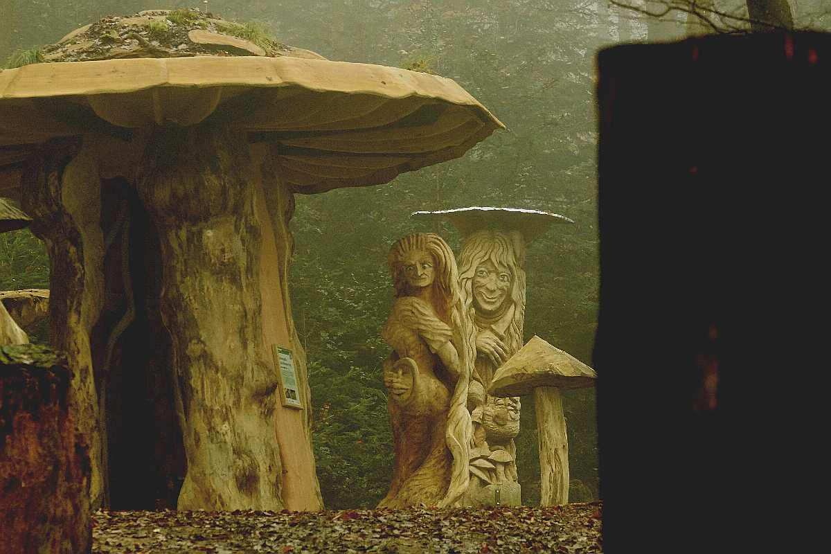 Hexenring , Herbstgrau, thomas rees 18