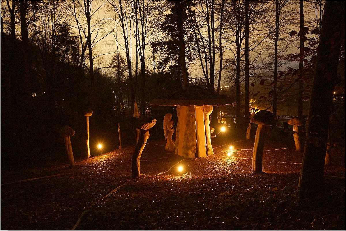Mycelium,Weihnachten 2014, thomas rees 11